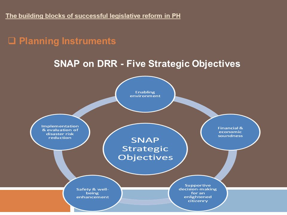 SNAP on DRR - Five Strategic Objectives
