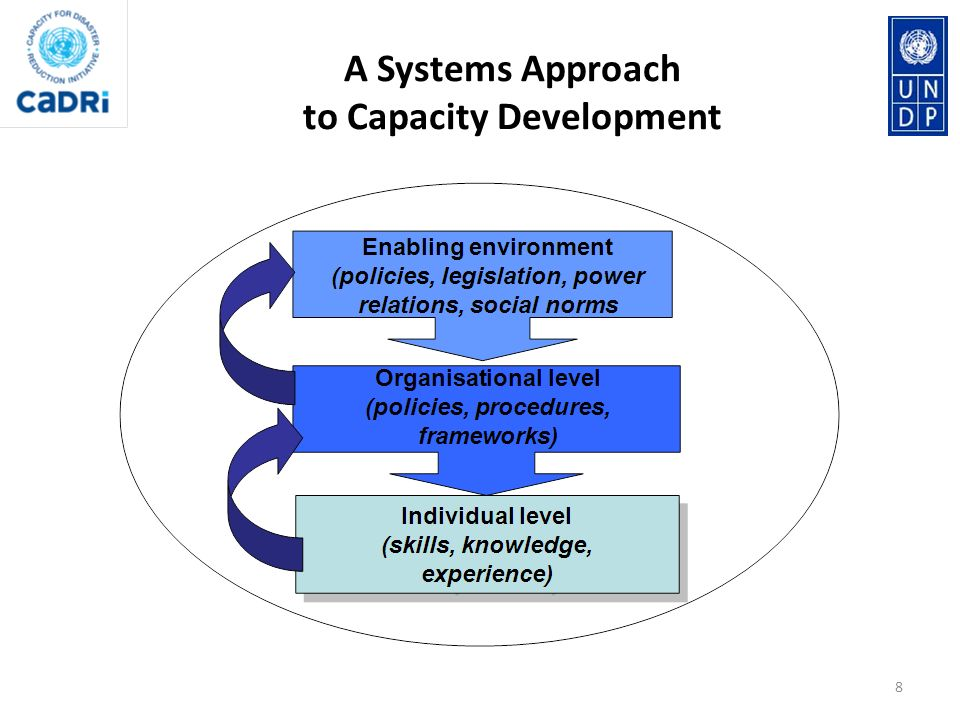 A Systems Approach to Capacity Development
