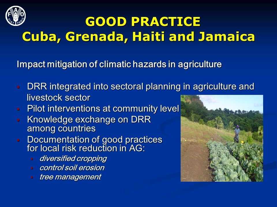 GOOD PRACTICE Cuba, Grenada, Haiti and Jamaica