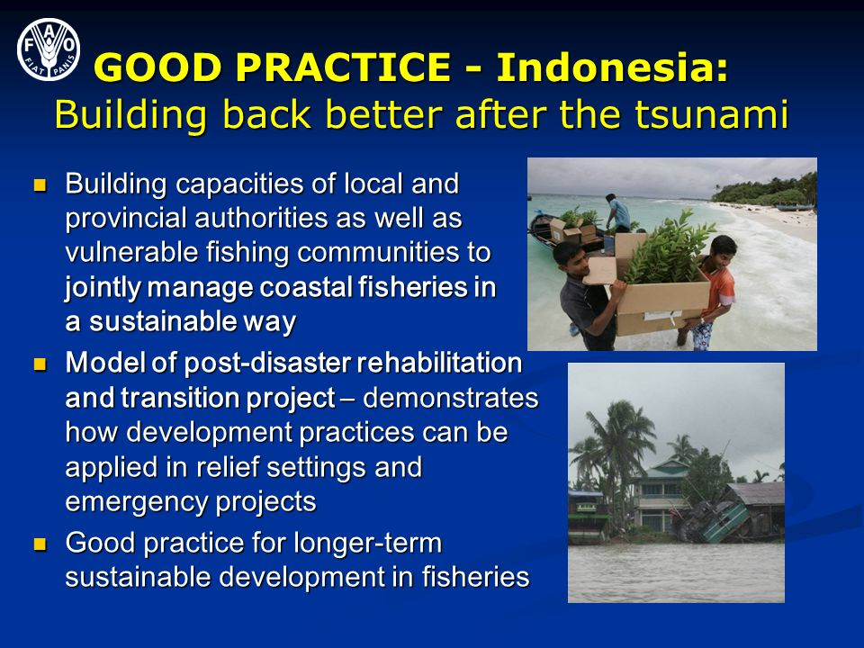 GOOD PRACTICE - Indonesia: Building back better after the tsunami