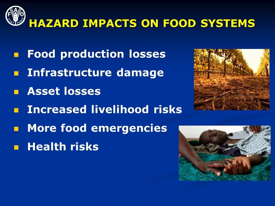HAZARD IMPACTS ON FOOD SYSTEMS