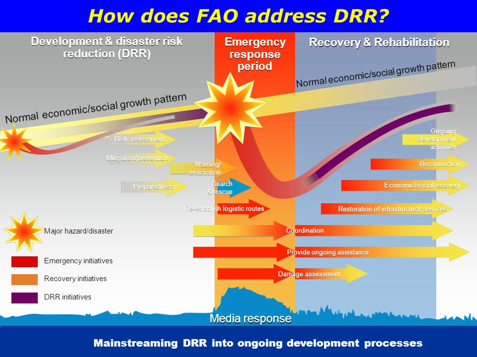 How does FAO address DRR