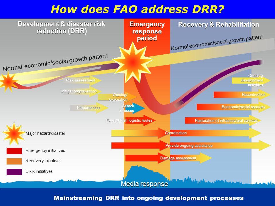 How does FAO address DRR