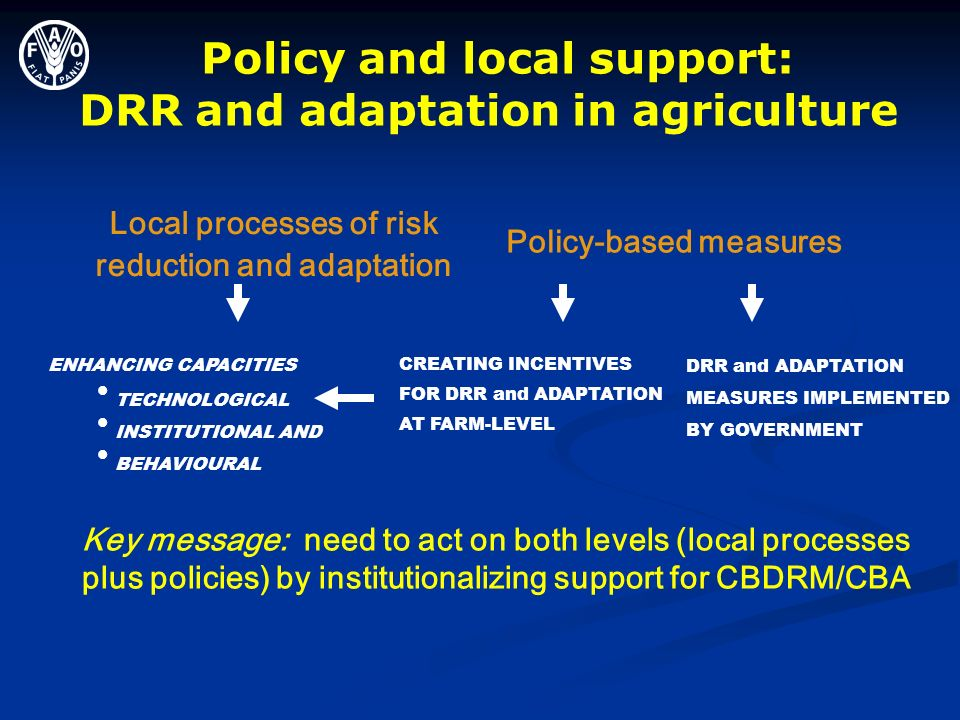 Policy and local support: DRR and adaptation in agriculture