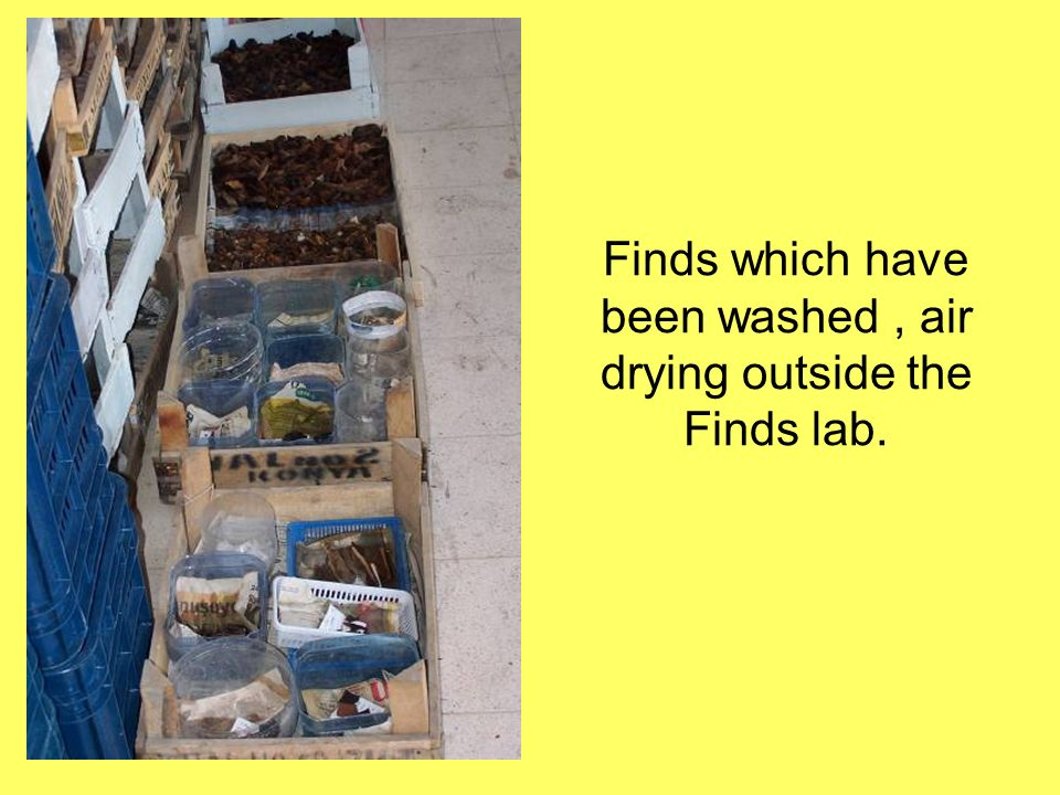 Finds which have been washed , air drying outside the Finds lab.