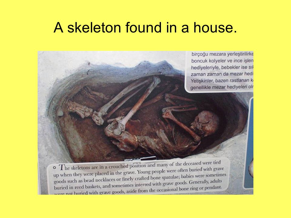 A skeleton found in a house.