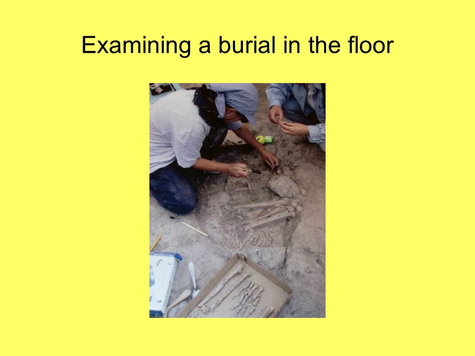 Examining a burial in the floor