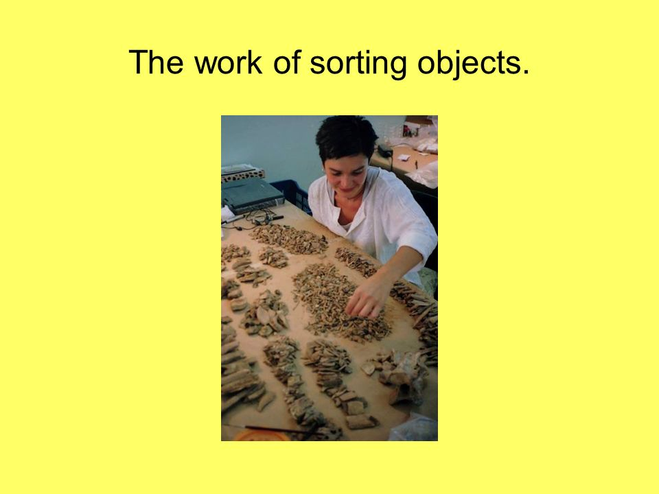 The work of sorting objects.