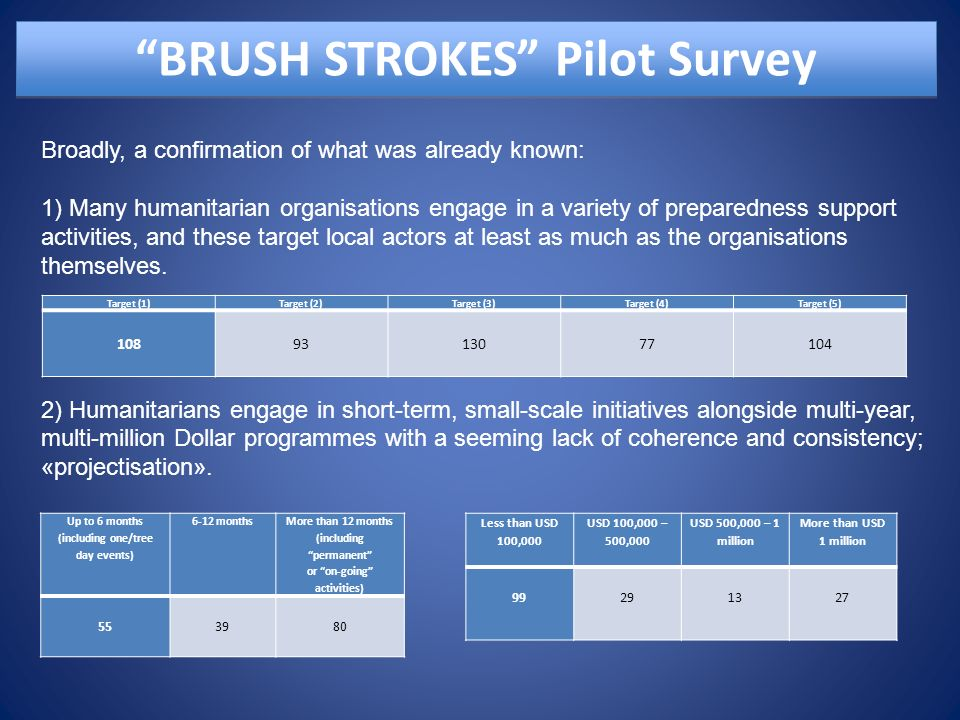 BRUSH STROKES Pilot Survey