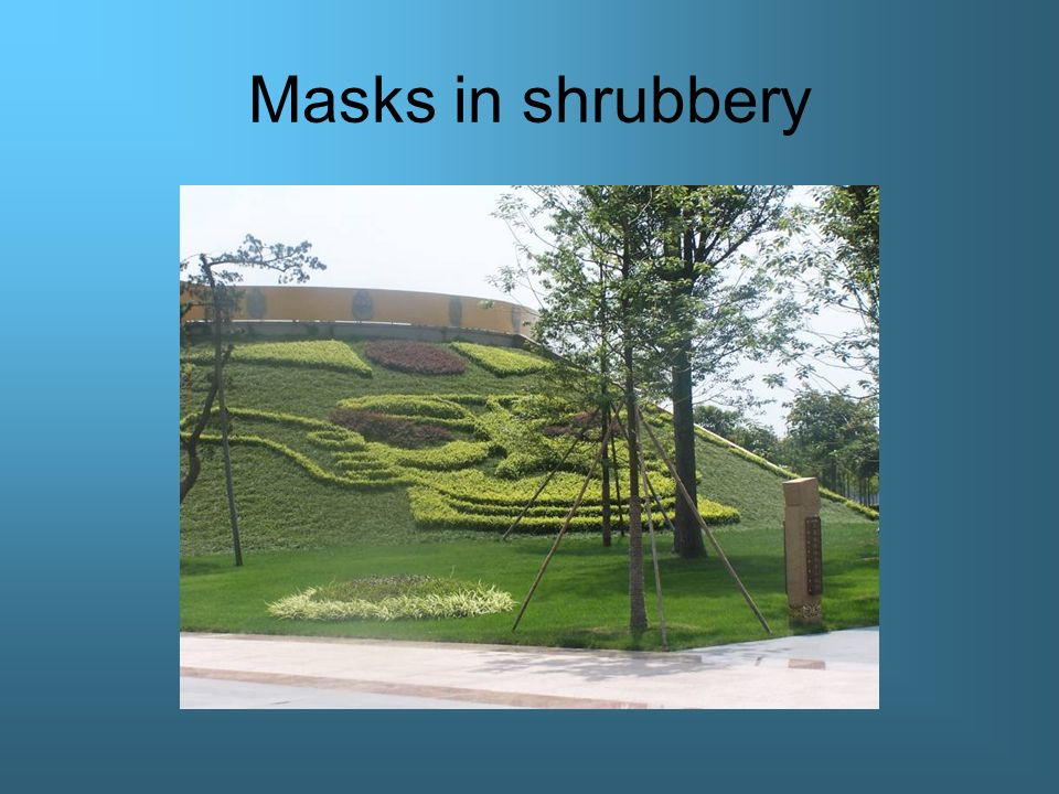 Masks in shrubbery