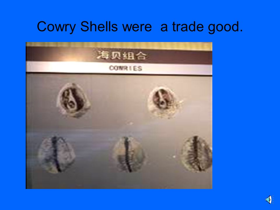 Cowry Shells were a trade good.