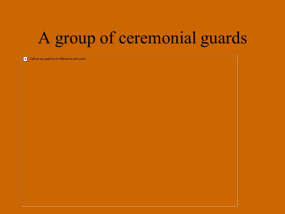A group of ceremonial guards