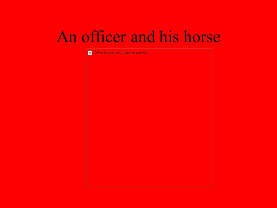 An officer and his horse