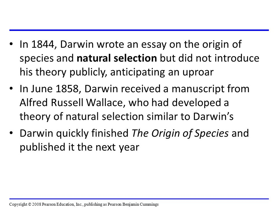 the origin of species essay The origin of species essays: over 180,000 the origin of species essays, the origin of species term papers, the origin of species research paper, book reports 184 990 essays, term and research papers available for unlimited access.