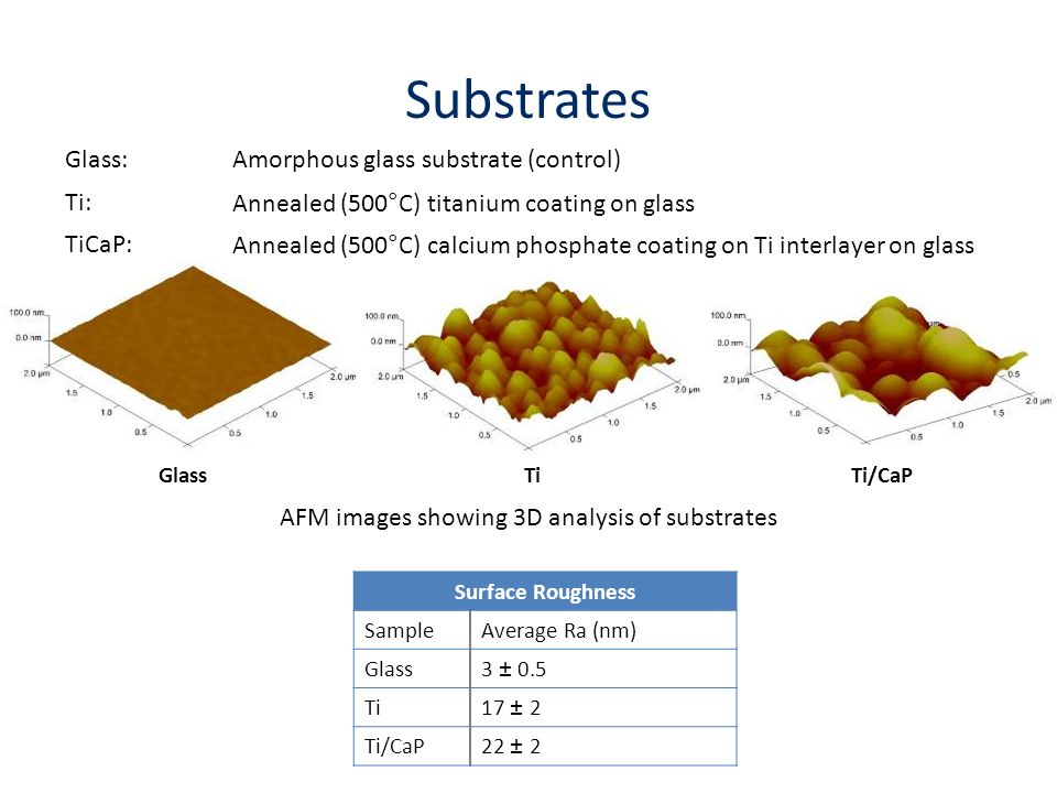 AFM images showing 3D analysis of substrates