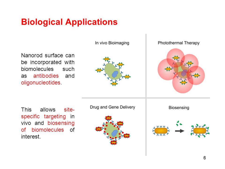 Biological Applications