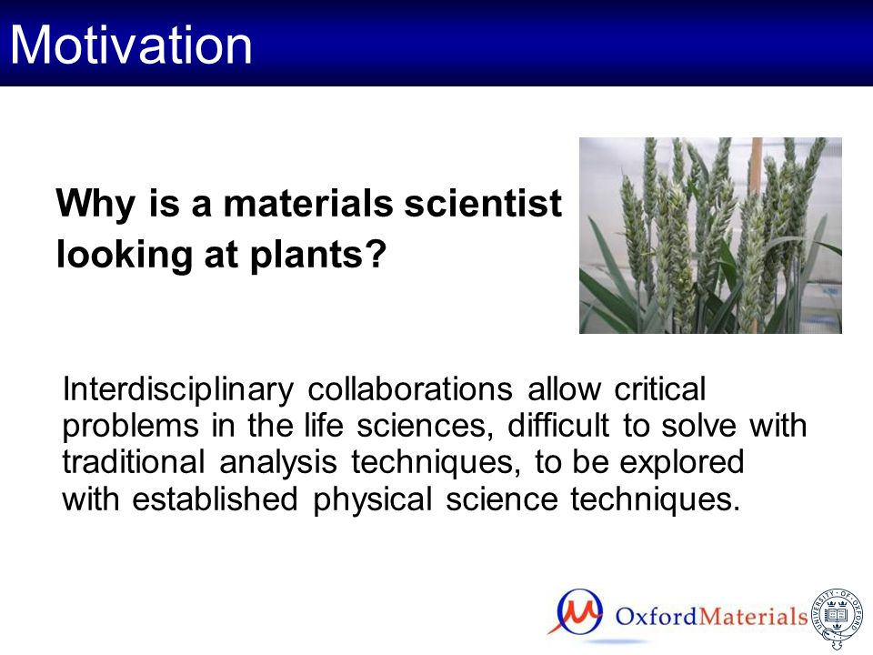 Motivation Why is a materials scientist looking at plants