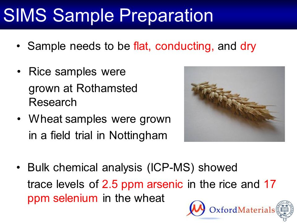 SIMS Sample Preparation