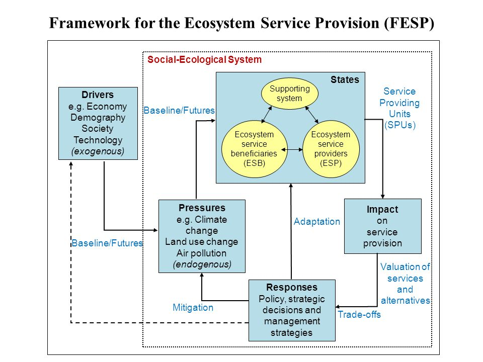 Framework for the Ecosystem Service Provision (FESP)