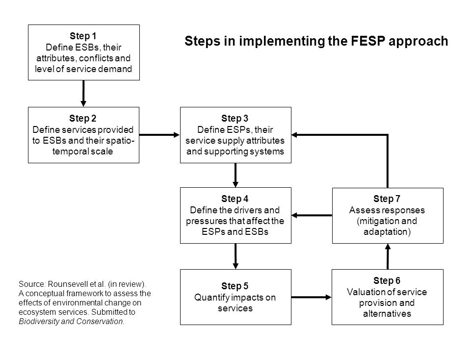 Steps in implementing the FESP approach
