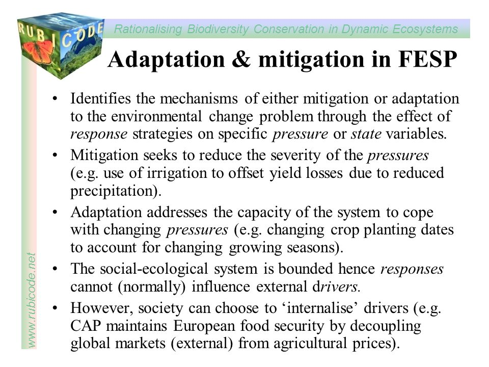 Adaptation & mitigation in FESP