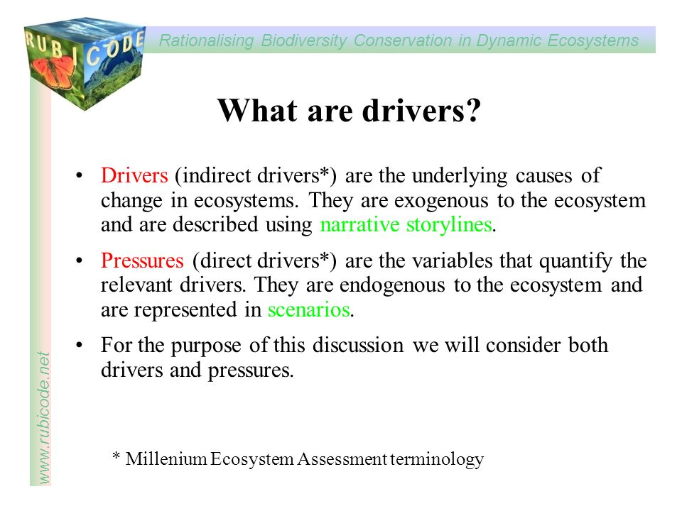 What are drivers