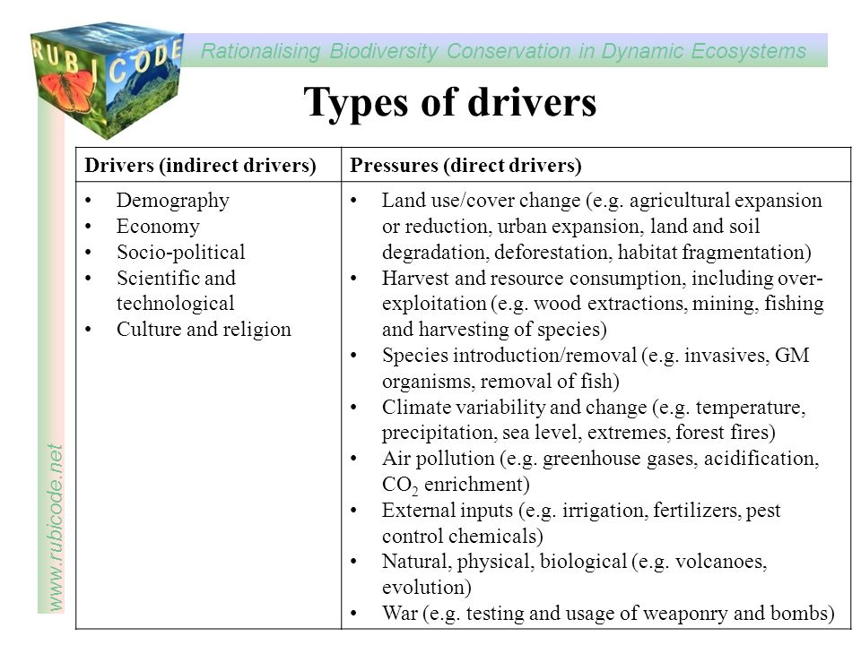 Types of drivers Drivers (indirect drivers) Pressures (direct drivers)