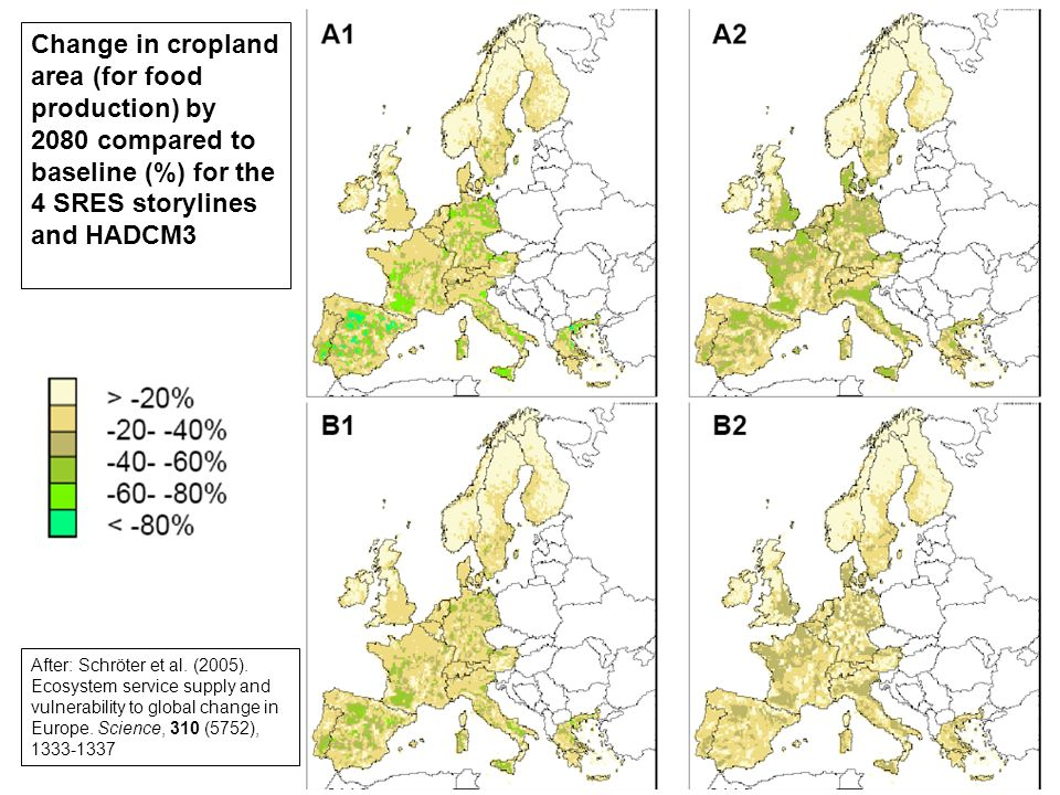 Change in cropland area (for food production) by 2080 compared to baseline (%) for the 4 SRES storylines and HADCM3