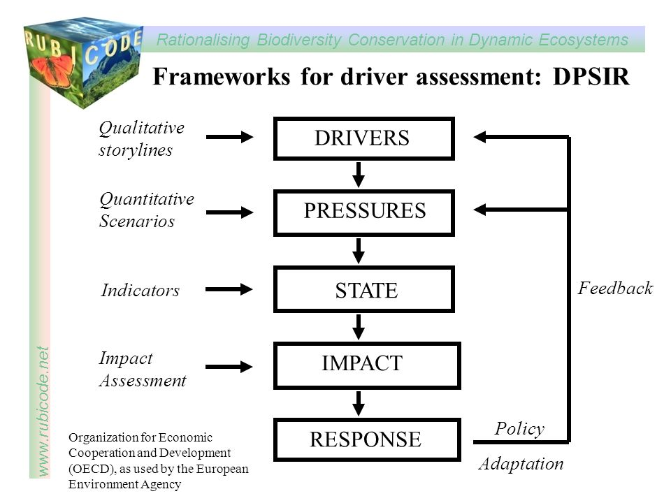 Frameworks for driver assessment: DPSIR