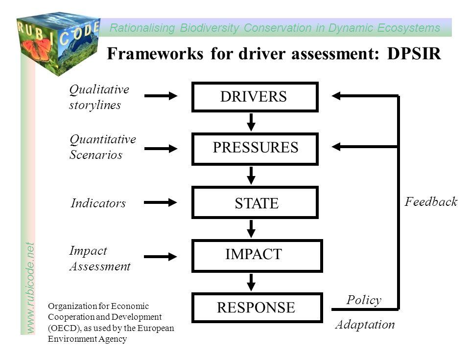Frameworks for driver assessment: DPSIR