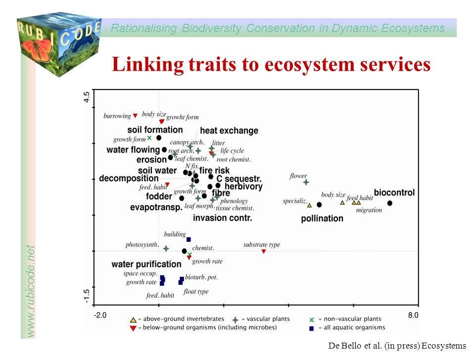 Linking traits to ecosystem services