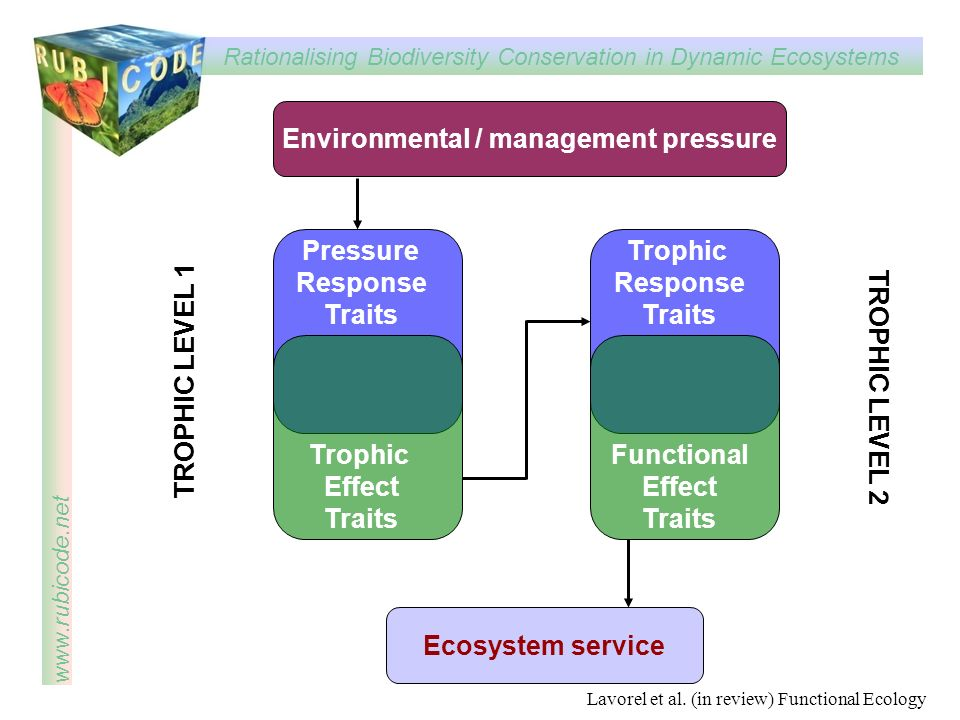 Environmental / management pressure