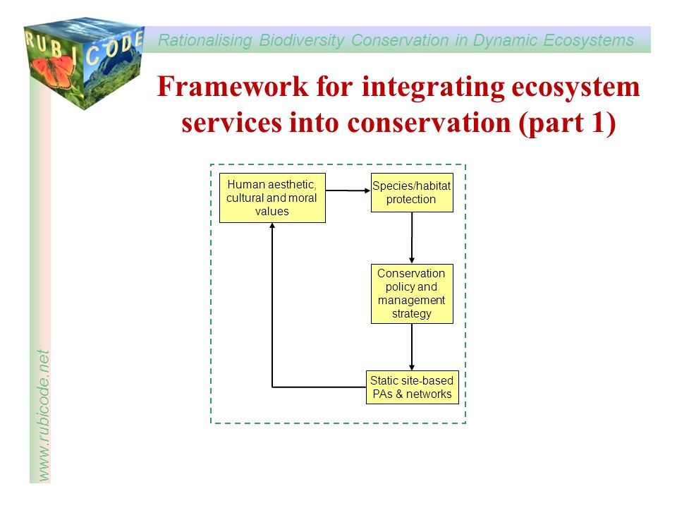 Framework for integrating ecosystem