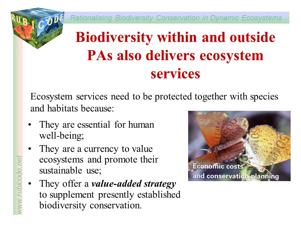 Biodiversity within and outside PAs also delivers ecosystem services