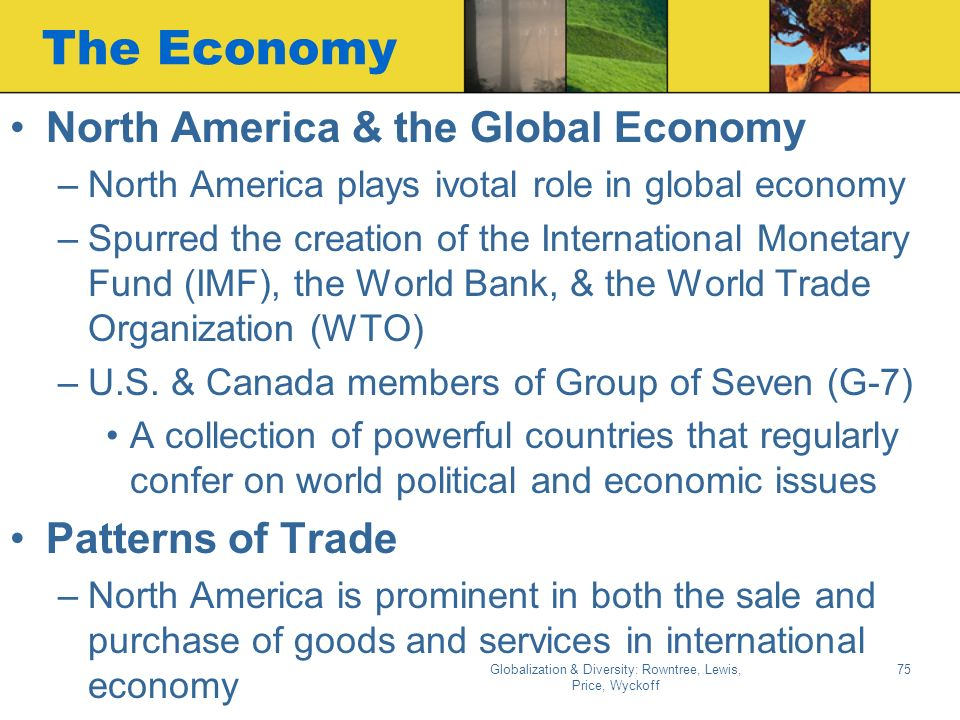 role of the imf