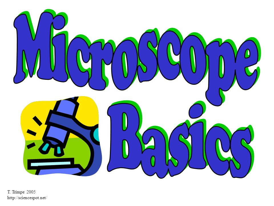 Microscope Basics T. Trimpe
