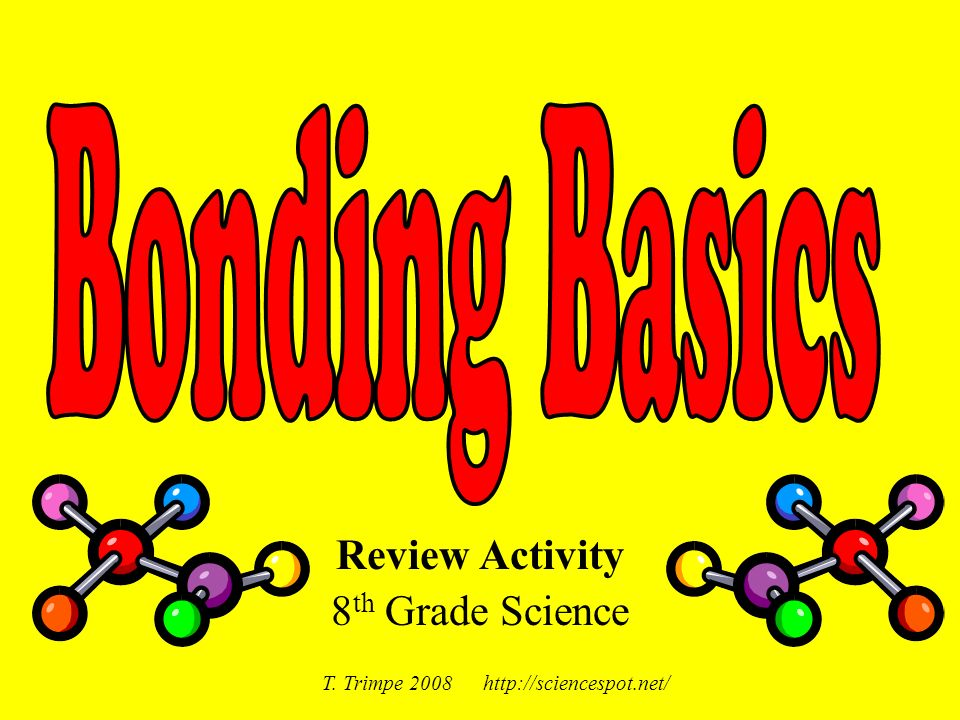 Review Activity 8th Grade Science