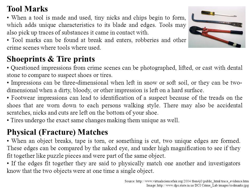 Shoeprints & Tire prints