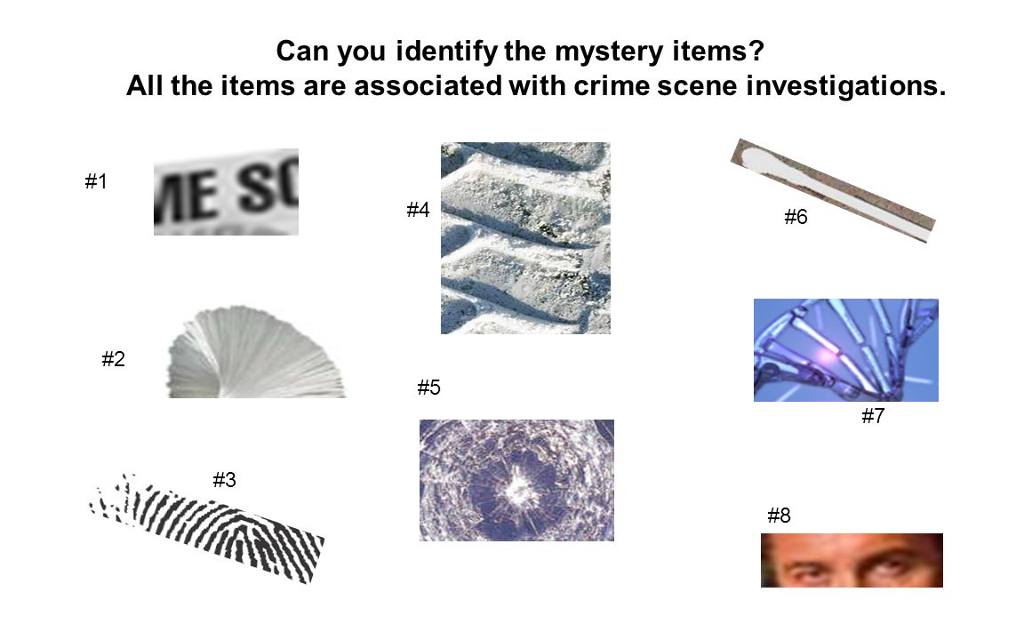 Can you identify the mystery items