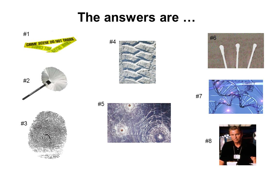 The answers are … #1 #6 #4 #2 #7 #5 #3 #8