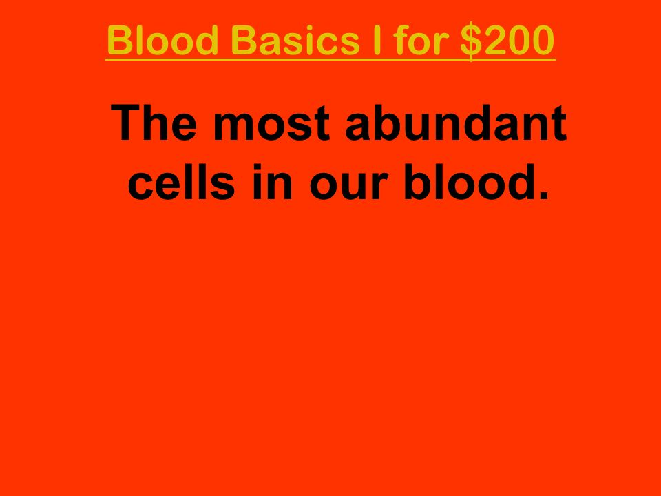 The most abundant cells in our blood.