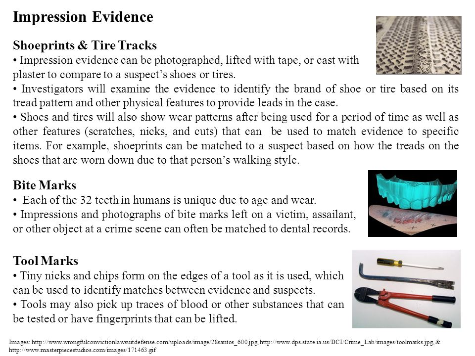 Impression Evidence Shoeprints & Tire Tracks Bite Marks Tool Marks