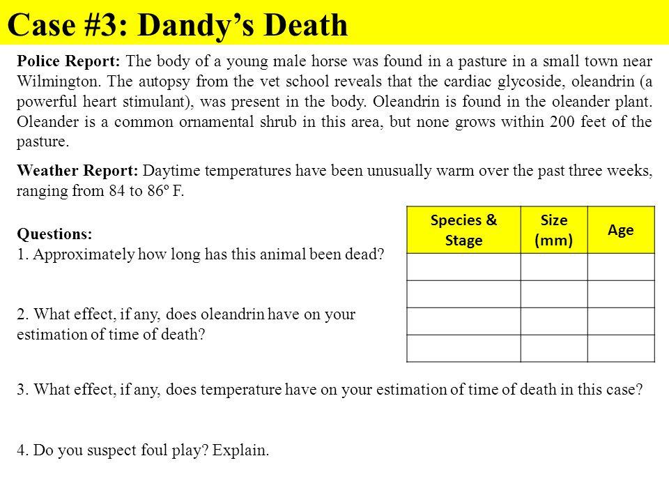 Case #3: Dandy's Death