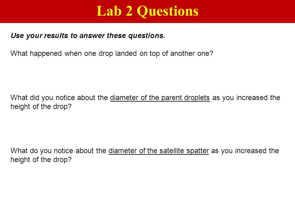 Lab 2 Questions Use your results to answer these questions.