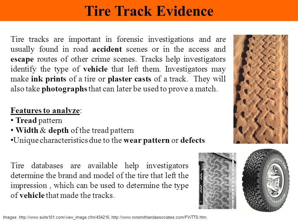 Tire Track Evidence