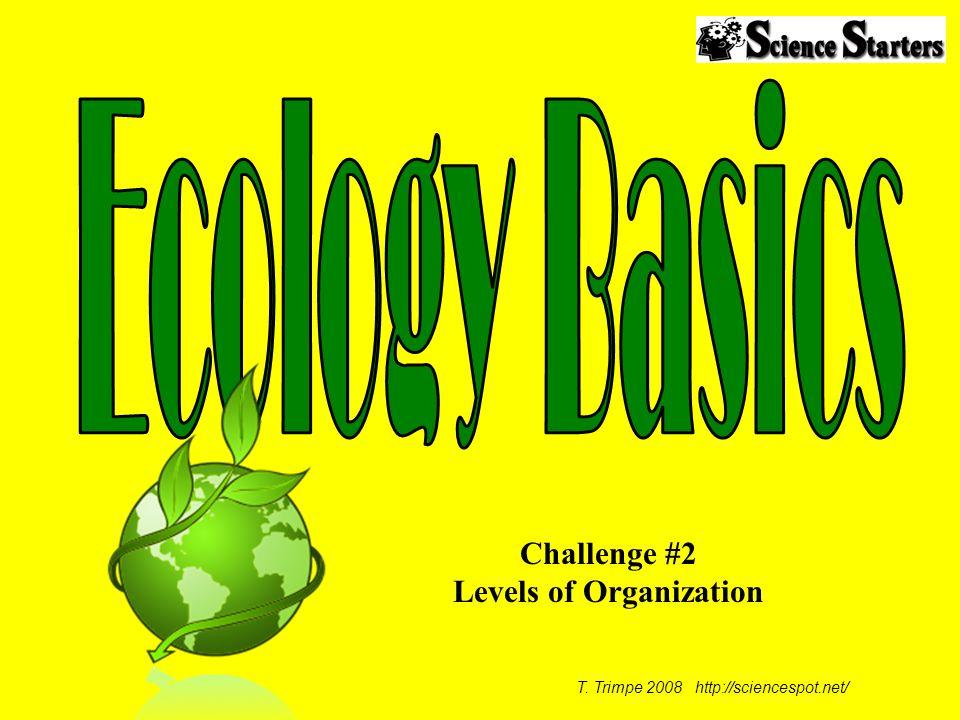 Challenge #2 Levels of Organization