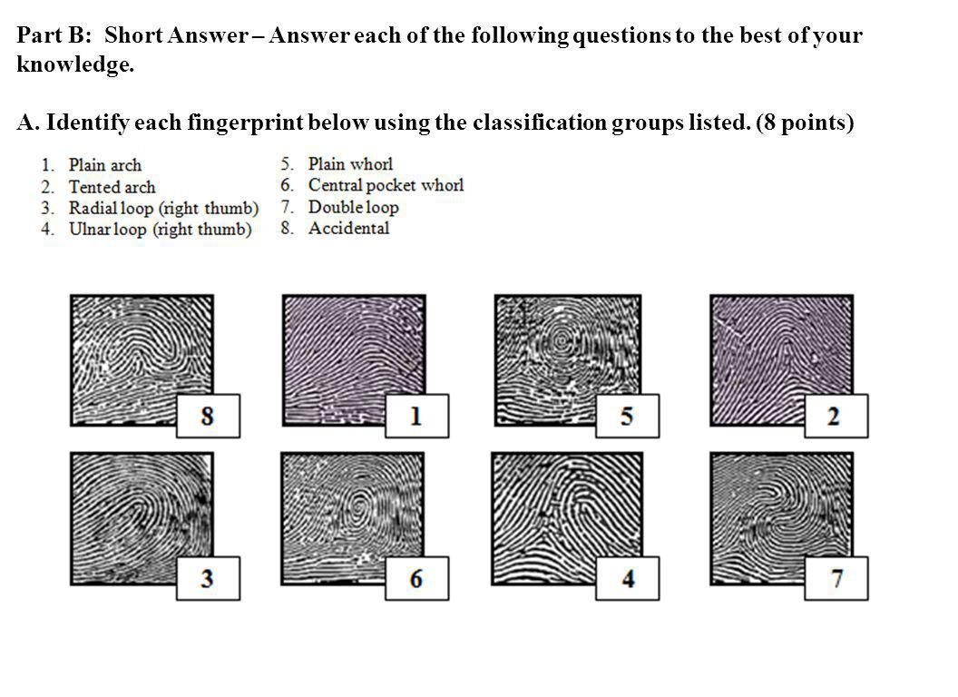 Part B: Short Answer – Answer each of the following questions to the best of your knowledge.