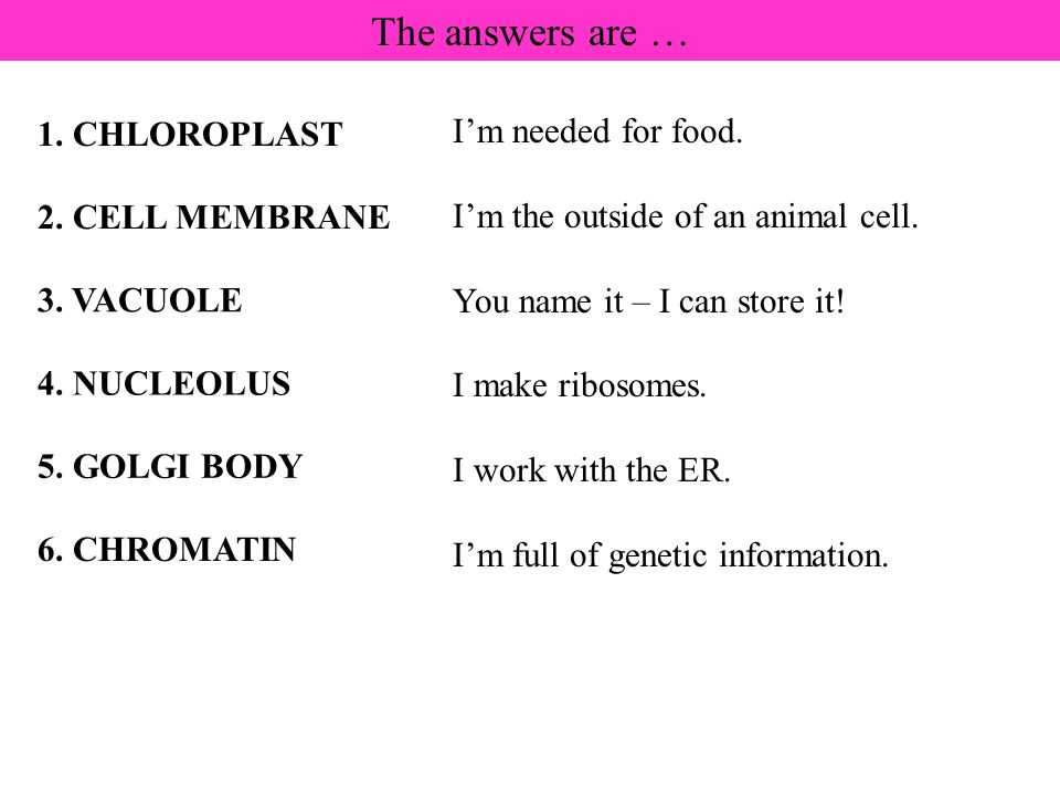The answers are … I'm needed for food. 1. CHLOROPLAST