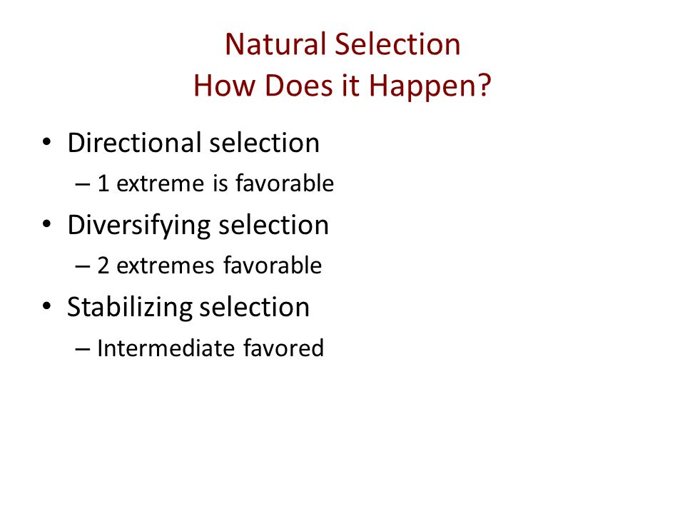 How Does Evolution Happen By Natural Selection