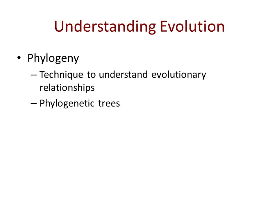 understanding evolution The following table offers a brief overview of how our understanding of evolution has changed over time this table presents three major versions of darwin's original theory: 1) darwin's theory 2) the modern synthesis and 3) the integral model of evolution.